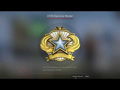 Counter Strike  Global Offensive 2018 Service Medal