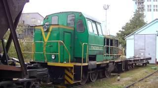 ТГМ 23