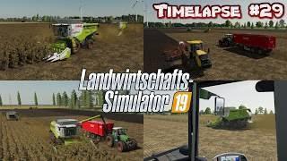 "[""farming simulator 2019 timelapse"", ""landwirtschafts simulator 2019 timelapse"", ""farming simulator 19 timelapse"", ""fs 19"", ""farming simulator 2019"", ""tractor"", ""fs mods timelapse"", ""farming"", ""farming simulator mods"", ""lets play farming simulator timelap"