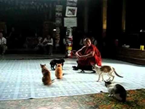El blog viajero de Vicente: CULTURA y VIAJES Myanmar ...