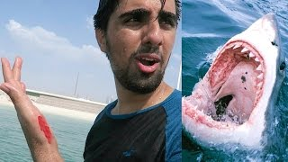 I Got Attacked By A Shark ?!!