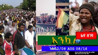 Ethiopian Daily News Digest (Ethiopia Protests Special) | August 8, 2016