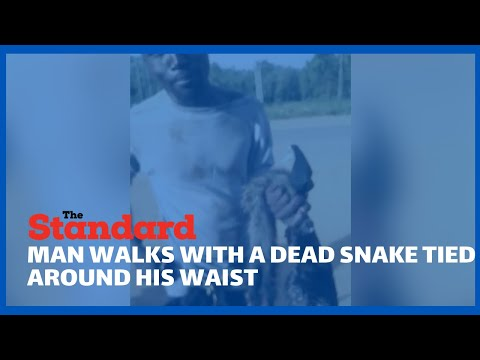 Man with a dead snake tied around his waist carrying carcasses of two cats stuns locals in Kisumu