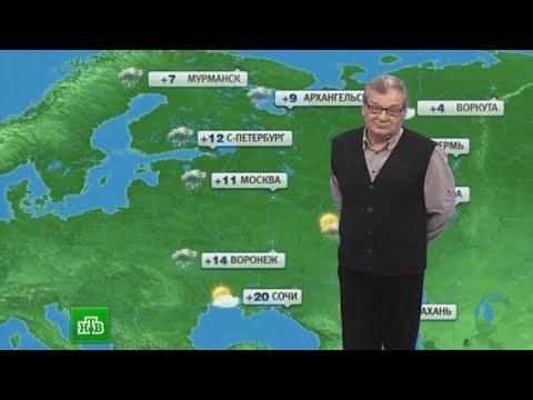 Росгидромет объяснил, что влияет на точность прогнозов погоды