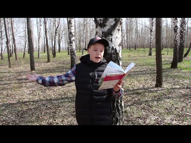 Изображение предпросмотра прочтения – АлександрЮдин читает произведение «Весна» А.Н.Плещеева
