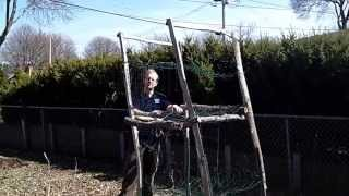 Natural Trellis Ideas - The Wisconsin Vegetable Gardener Straight To The Point