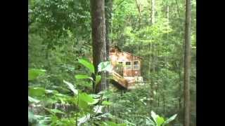 natural bridge state park ky area presented by 5 star cabin rental