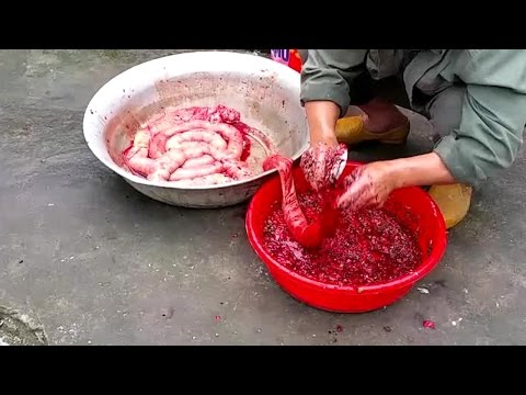 VN Daily - Wow! Amazing Khmer Food. How To Make Blood Sausage.  Ethnic Cuisine