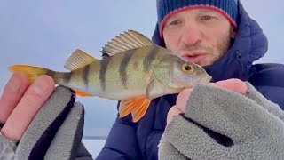 Зимняя рыбалка 2021 со льда на озере Шарташ в сильную метель