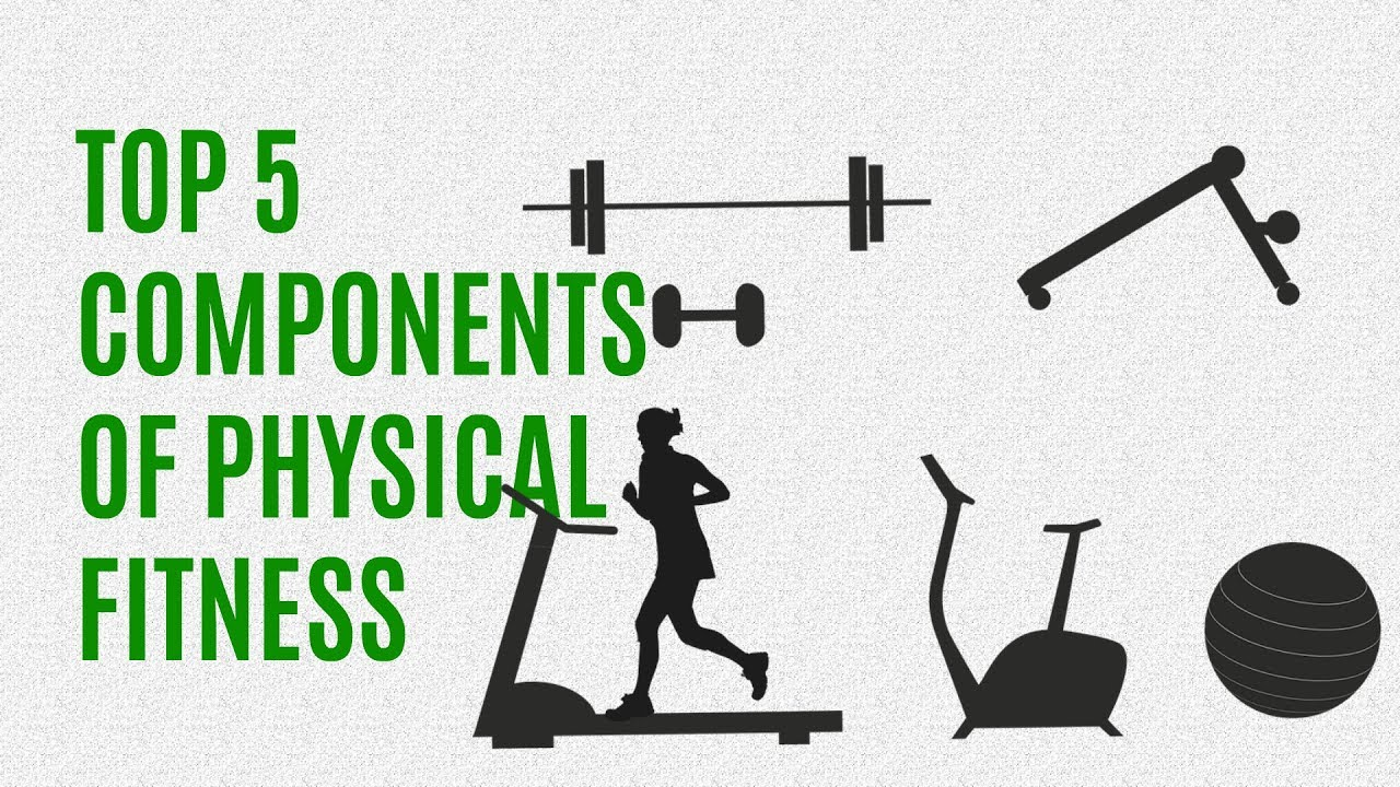 5 components of fitness