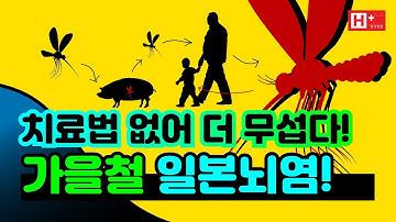 11월까지는 조심 또 조심! 치료법 없어 더 무서운 '일본뇌염'