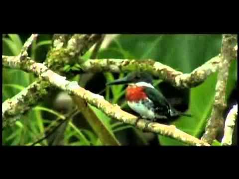Panama Travel and Tourism