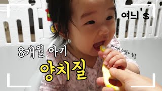 [8M]아기양치질_마이비실리콘치발기칫솔