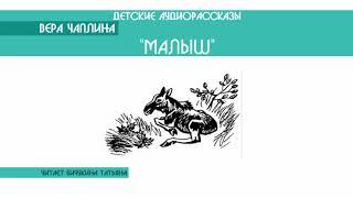 """Вера Чаплина """"Малыш"""" - детский аудиорассказ: слушать онлайн"""