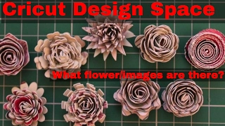 Cricut design Space 3d Flowers - Selection of different flower images made up