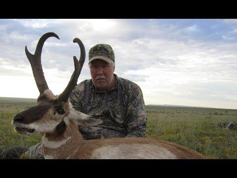 Arizona Record Book Antelope