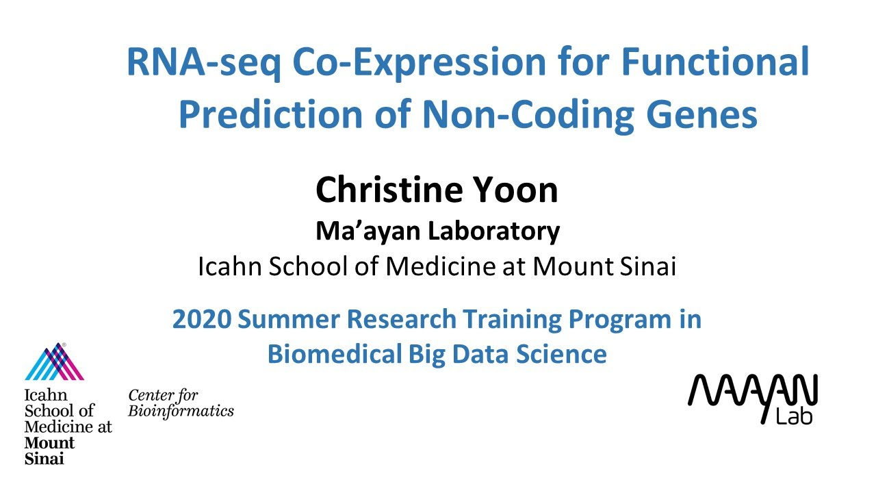 RNA-seq Co-Expression for Functional Prediction of Non-Coding Genes