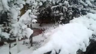 Yine kar hep kar