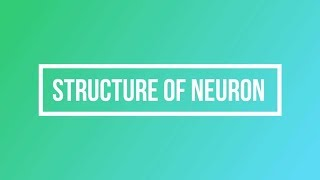 Structure of a Neuron || Essential Science ||