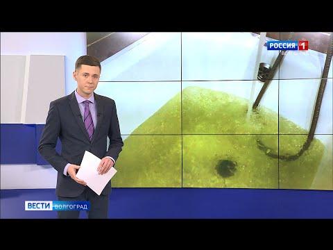 Вести-Волгоград. Выпуск 19.03.20 (20:45)