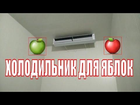 Холодильные камеры для хранения яблок.