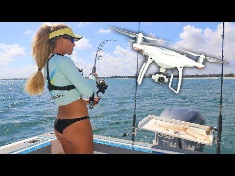 DRONE Finds SHARKS Near the Beach! Blacktip Shark Migration