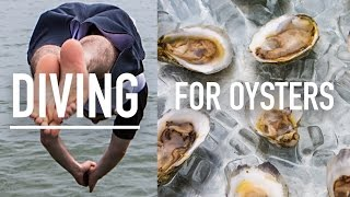 Virginia - Diving For Oysters With Thor! #lostandhungry