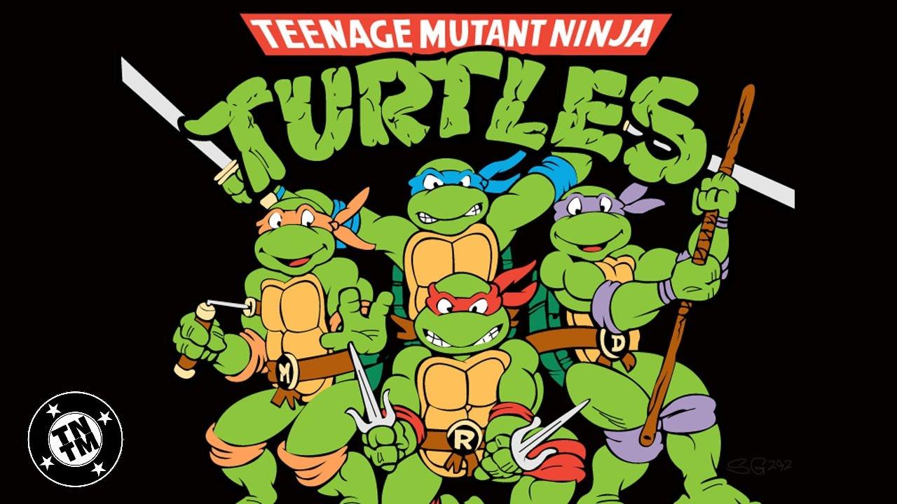 Teenage mutant ninja turtles character