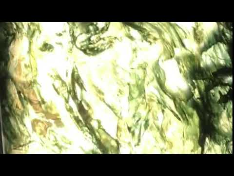 Moss Agate (Carnegie museum of natural history)