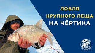 Ловля крупного Леща на чёртика Безмотыльная рыбалка на водохранилище