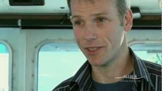 Antarctic Marine Food Webs
