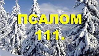 **ПСАЛОМ-111. ХОТИТЕ ИМЕТЬ ОБИЛИЕ И БОГАТСТВО, ЖИВИТЕ ТАК.**