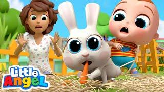 Class Pet Song | Little Angel Kids Songs & Nursery Rhymes