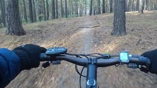 Велопрогулка 17.10.2020