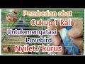 Cara Mengobati Lovebird Nyilet  Mp3 - Mp4 Download