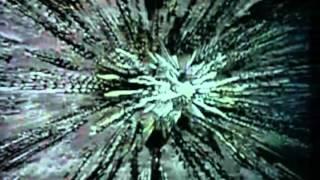 Starcrash Trailer 1979