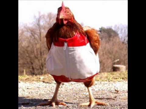 Techno Chicken Rmx