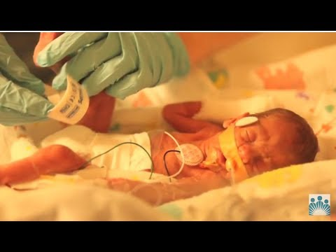 Summary of Preemies and Preemie Care