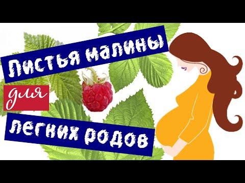 Как пить малину перед родами