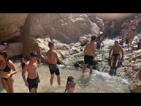 Mouly , Wolberger, Gal Dead Sea Trip