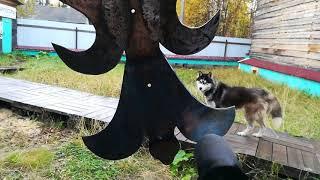 видео Дерево и кованый металл с витражными вставками