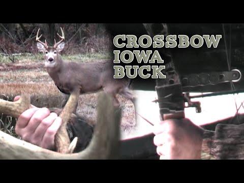 Iowa Bow Hunt Babe Winkelman's
