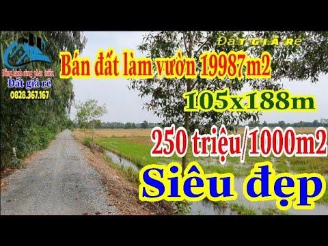 🔴Số 402- Bán Đất làm vườn, 19987m2, 105x188m, Long Thành, Thủ Thừa, Long An