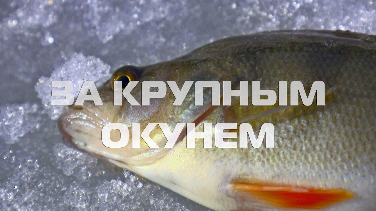 зимняя рыбалка первый лед
