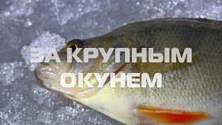 Озеро Лемболовское. Карта глубин и описание рыбалки на ...