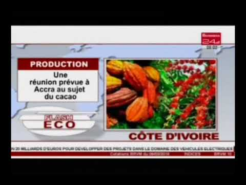 Business 24/Flash eco -Production : une réunion prévue à Accra au sujet du cacao