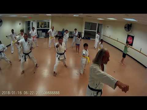Karate Class 1-16-18