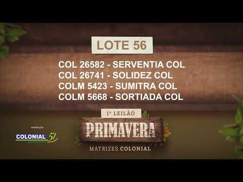 LOTE 56   COL 26582,26741,COLM 5423,5668