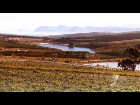 Hermanus - South Africa Travel Channel 24