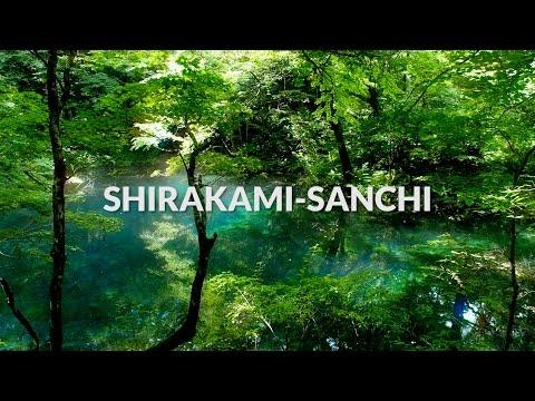 Shirakami Sanchi,  Aomori   One Minute Japan Travel Guide